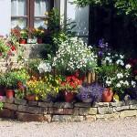 photo de maisons fleuries
