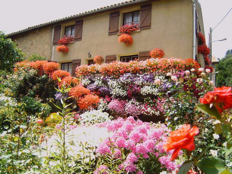 image-maison-fleurie-7