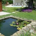 photo de maison et jardin