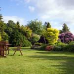 image maison et jardin